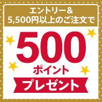 dマーケットマスター500ポイントプレゼント 31日まで