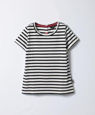 WC60 TS ボーダーTシャツ