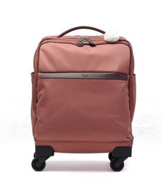 カナナプロジェクト スーツケース kanana project キャリーケース 機内持ち込み ソフトキャリー カナナマイトローリー PJ-10-2rd 25L