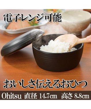 おいしさ伝えるおひつ レンジ可 電子レンジ 御膳 陶器 キッチン