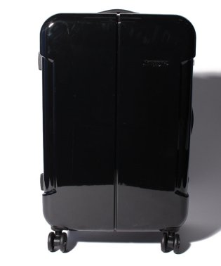 【HIDEO WAKAMATSU】 スーツケース ナローII M
