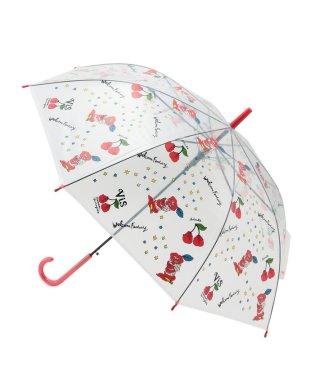 【masami yanagida×ViS】ビニール傘