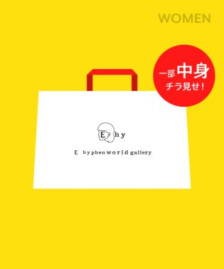 【2019年E hyphen world gallery】1万2千円HappyBag