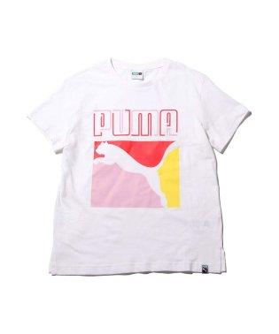 プーマ グラフィックス レギュラー トリプル カラー ティーシャツ