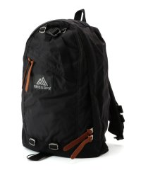 GREGORY: CLASSIC DAY PACK (デイパック)