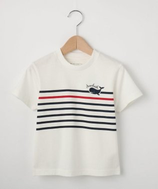 【100cm~150cm】ボーダー×クジラデザインTシャツ