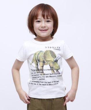 トリケラトプス半袖TEE