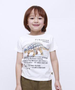 アンキロサウルス半袖TEE