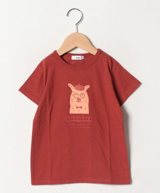 アニマル半袖Tシャツ