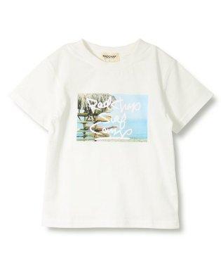 【プチプラ】写真プリント半袖Tシャツ(90~140cm)