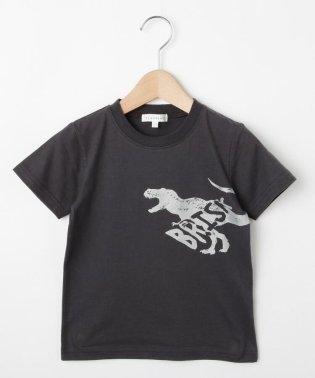 【コットン100%】【100cm~150cm】恐竜プリントTシャツ