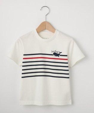 【100cm~150cm】ボーダー×クジラTシャツ