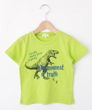 【コットン100%】【100cm~160cm】恐竜プリントTシャツ