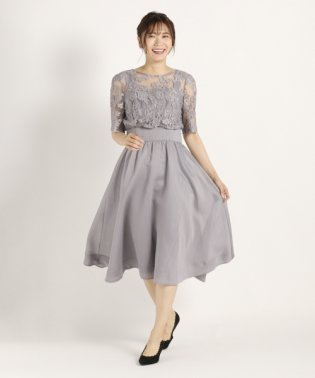 DVシアーシャンタン ドレス