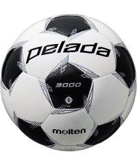 モルテン/ペレーダ3000