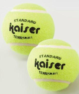 硬式テニスボール 2P