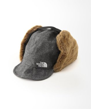 【THE NORTH FACE/ノースフェイス】 Novelty Frontier キャップ