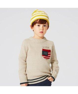 星条旗ポケットセーター