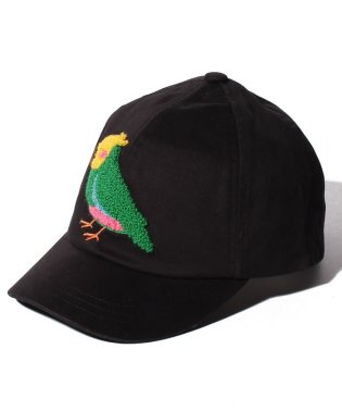 ANIMAL CAP YSGR