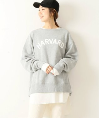 【GOOD ROCK SPEED】Sweat Pullover /  スウェットプルオーバー