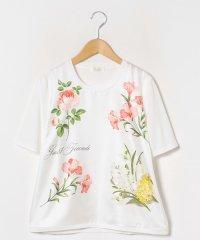 【大きいサイズ】【アンサンブル対応】 ARINA フラワープリント布帛使い ニットプルオーバー