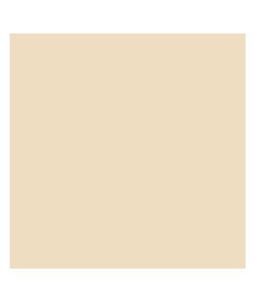 (BACKYARD/バックヤード)東レ トレシーカラークロス 30cm×30cm/ユニセックス ベージュ