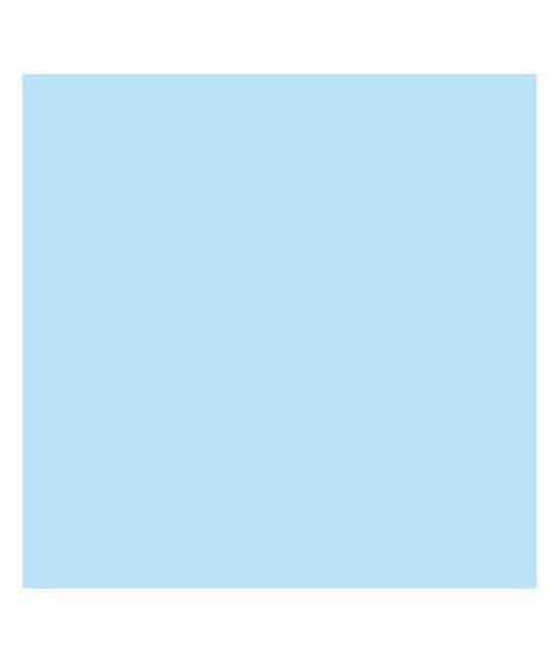 (BACKYARD/バックヤード)東レ トレシーカラークロス 30cm×30cm/ユニセックス ライトブルー