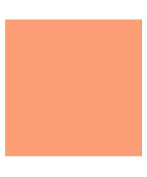 (BACKYARD/バックヤード)東レ トレシーカラークロス 30cm×30cm/ユニセックス オレンジ