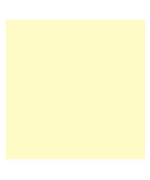 (BACKYARD/バックヤード)東レ トレシーカラークロス 30cm×30cm/ユニセックス ライトイエロー