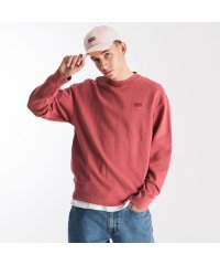 AUTHENTIC LOGO CREWNECK EARTH RED