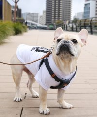 ドッグウエア 犬服 ペアルック ペットとお揃い 小型犬 中型犬 LICICK リシック 8661