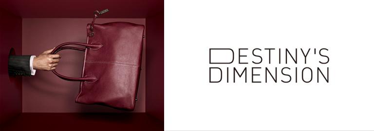 DESTINY'S DIMENSION(デスティニーズディメンション)